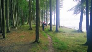 Steilküste an der Flensburger Förde