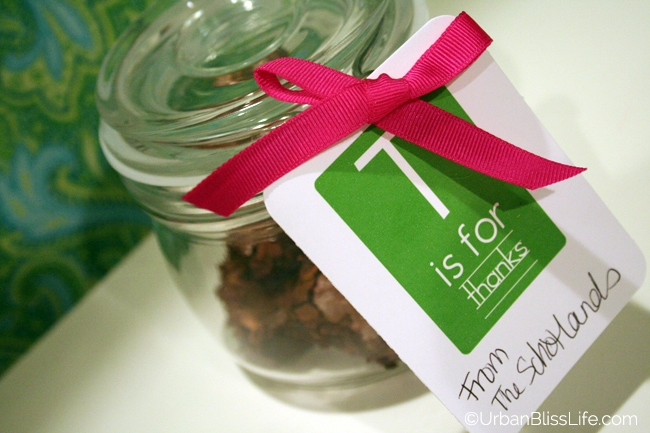Holiday gifts - brownies