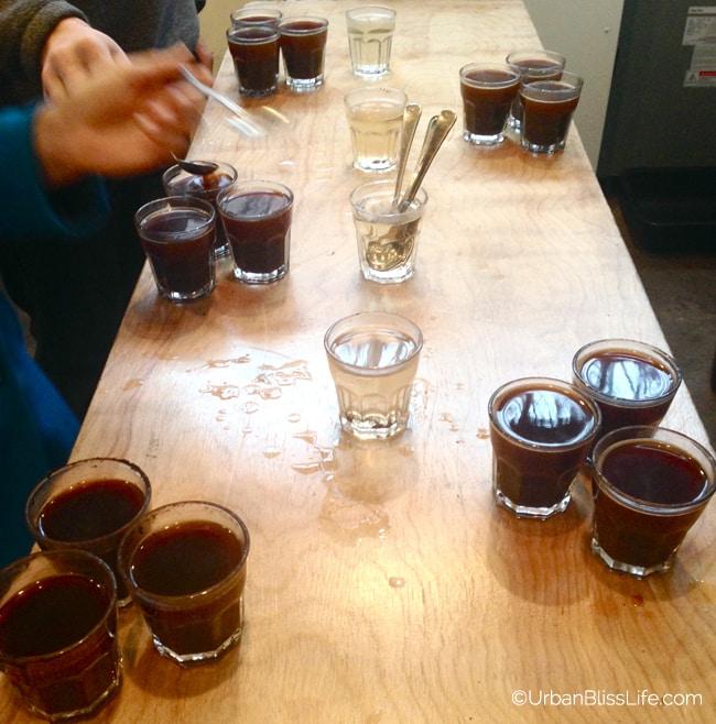 Third Wave Coffee Tour - Nossa Familia 3