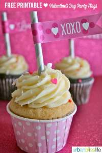 Valentine's Day Printable Party Flags