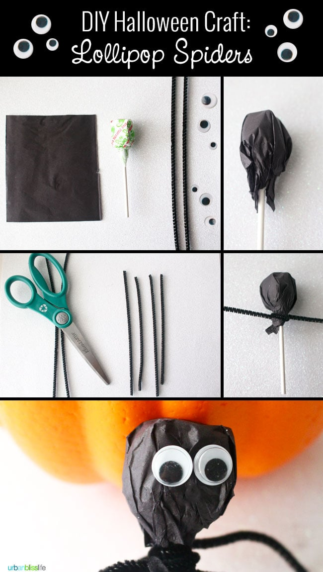DIY Halloween Craft Googly Eye Spider