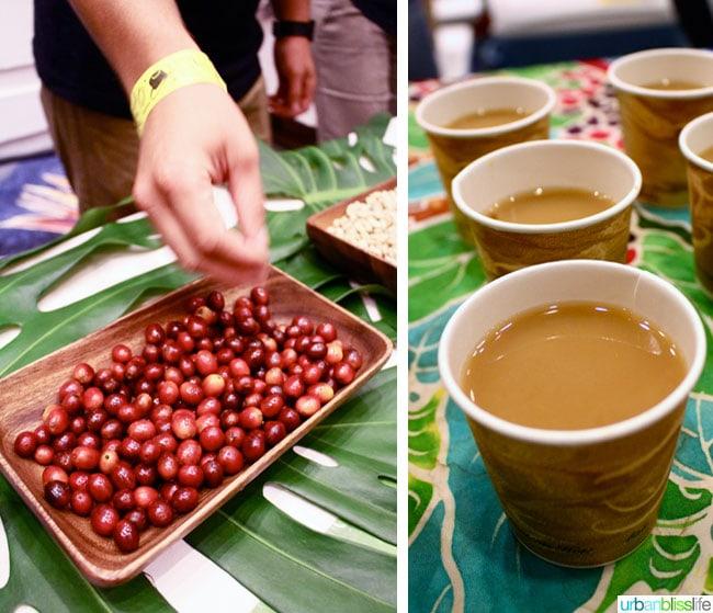 Taste of the Hawaiian Range 2014 | UrbanBlissLife.com