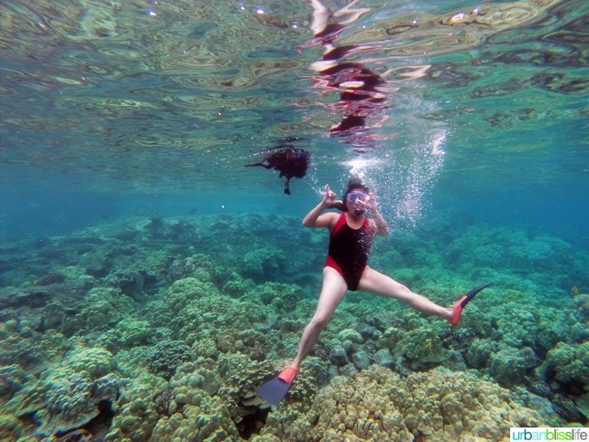 Hawaii Island Snorkeling | UrbanBlissLife.com