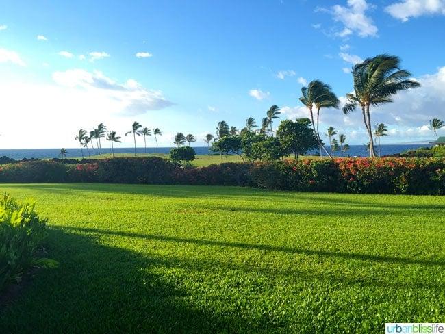 Mauna Lani Beach Hawaii