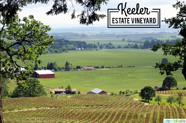 Keeler Estate Vineyard Oregon wine