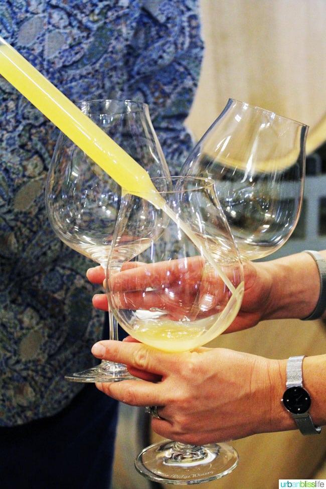 Raptor Ridge Winery - Oregon Wine Country - UrbanBlissLife.com