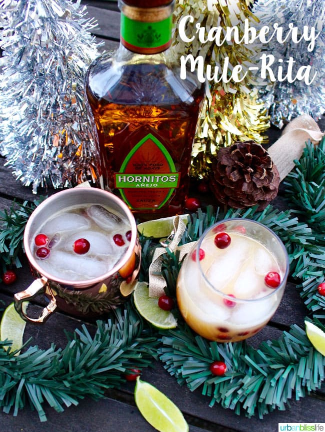 Cocktail Bliss: Cranberry Mule-Ritas