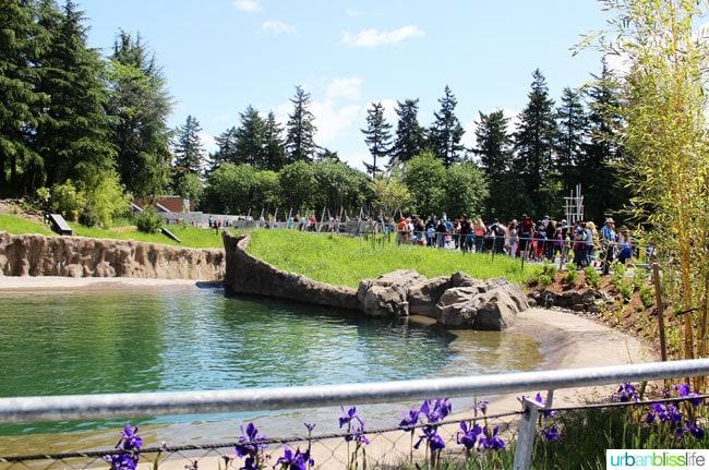 Oregon Zoo Elephant Water Walkway