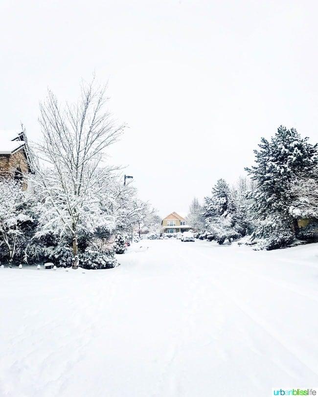 Winter wonderland in Portland, Oregon, January 2017 Snowstorm on UrbanBlissLife.com