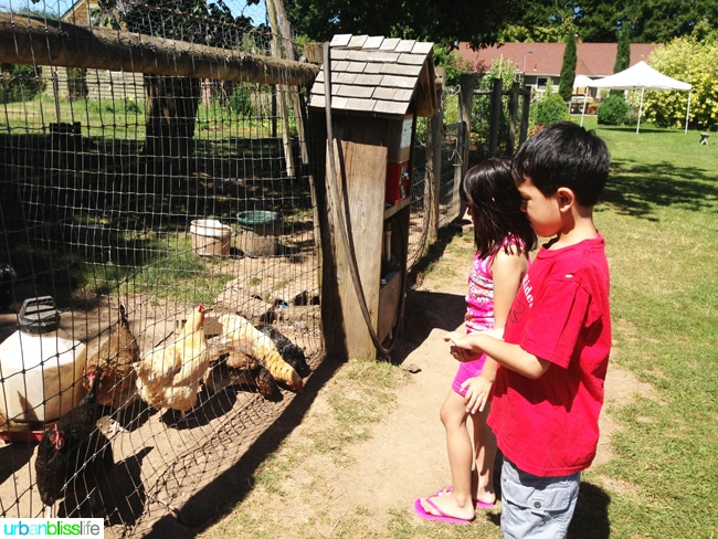 50 Things to Do in Portland, Oregon With Kids During the Summer - Smith Berry Barn, travel tips on UrbanBlissLife.com.