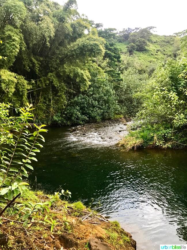Ziplining and Kayaking in Kauai on UrbanBlissLife.com