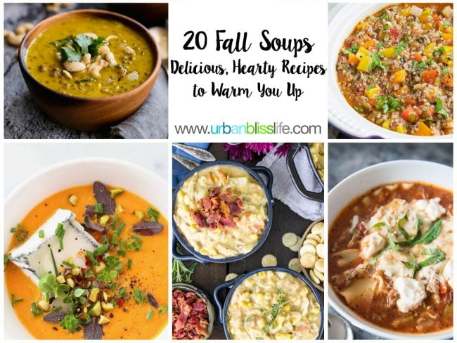 20 Best Fall Soup Recipes to Keep You Warm!