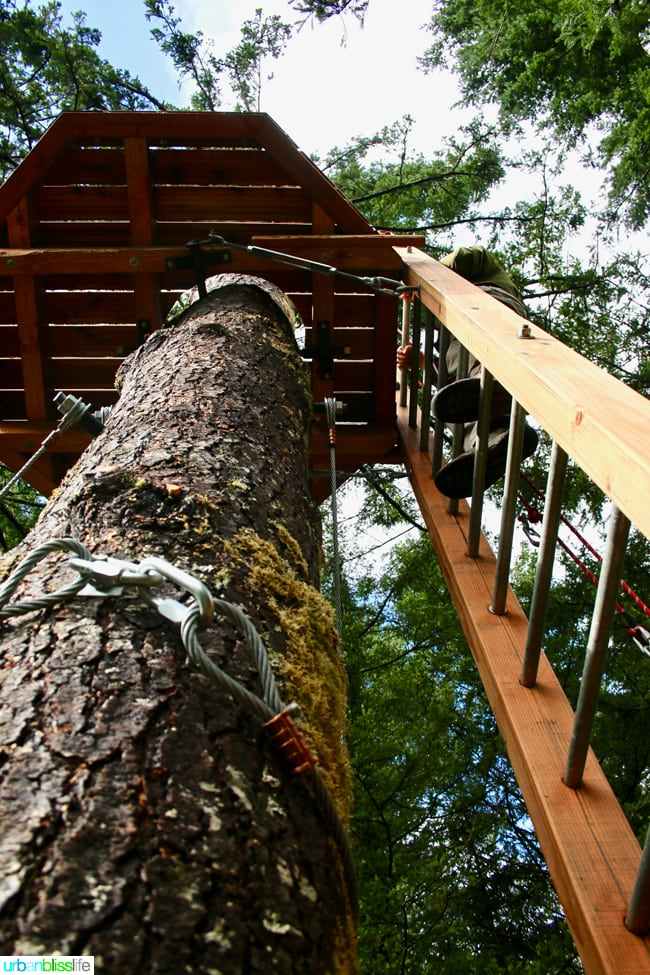 Skamania Lodge Aerial Park. Travel stories & hotel reviews on UrbanBlissLife.com