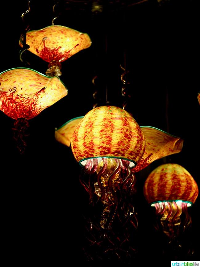 jellyfish lights at Cabezon restaurant in Portland, Oregon. Full restaurant details on UrbanBlissLife.com