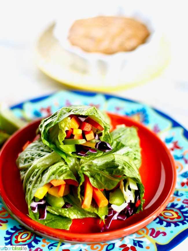 Rainbow Salad Rolls plated