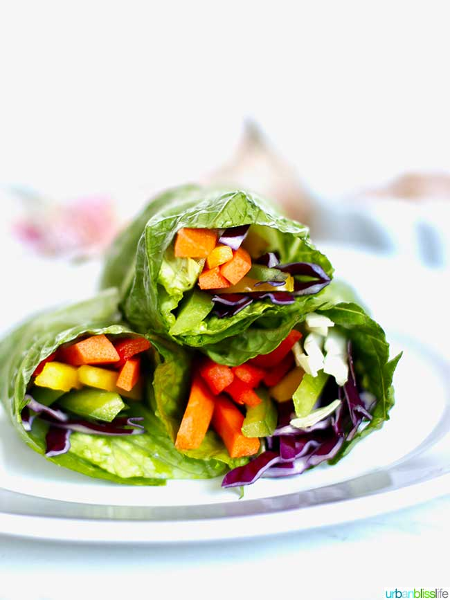 Healthy Rainbow Salad Rolls (Whole30, Paleo, Gluten Free, Dairy Free)