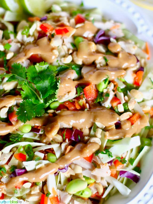 Thai Chicken Salad close up with dressing