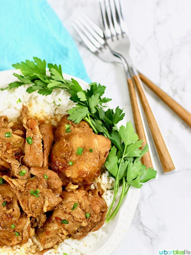 Instant Pot Filipino Chicken Adobo