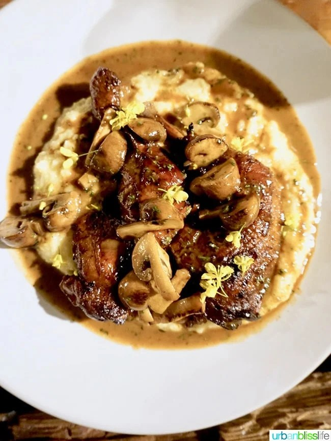 Il Solito restaurant braised chicken marsala