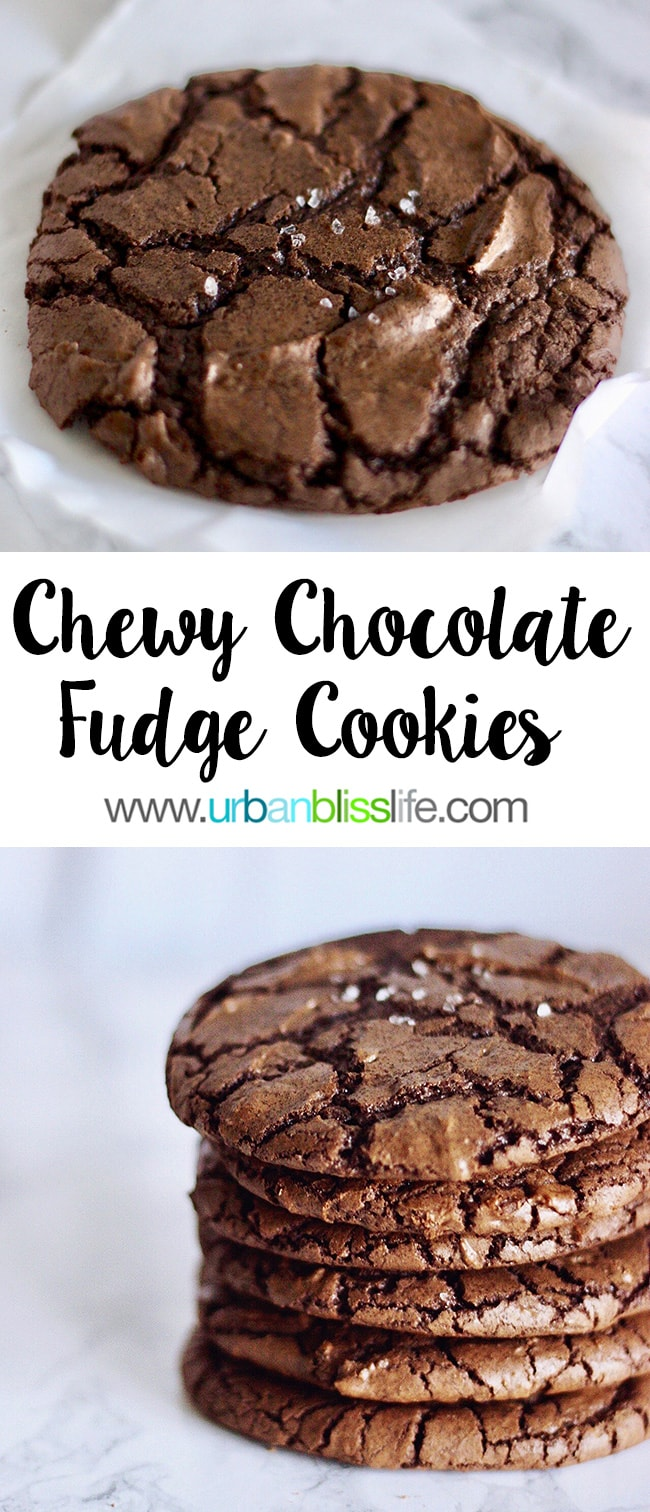main Chewy Chocolate Fudge Cookies