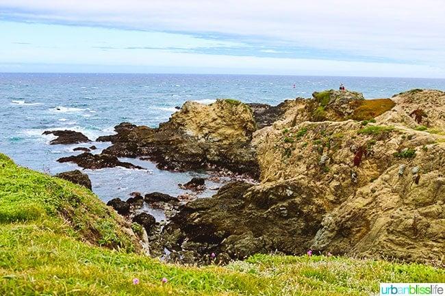 Northern California Coastal Bliss: Fort Bragg, California