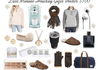 last-minute-holiday-gifts-for-him-and-her-under-100