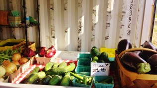 Fresh Produce at the Findlay Market Farmstand in Walnut Hills [Jocelyn Gibson]