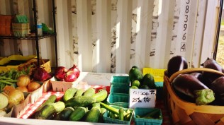 Fresh Produce at the Findlay Market Farmstand in Walnut Hills [Jocelyn Gibson]