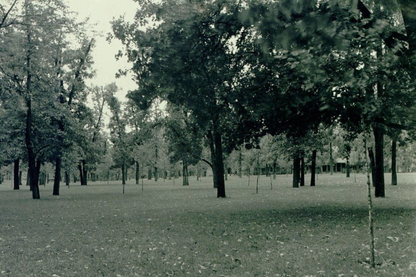 """The original caption for this picture read: """"Picnic grove at Minnehaha Falls - resurfaced and sodded by W.P.A."""