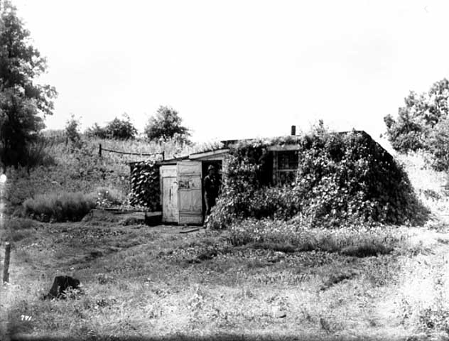The sod house lived in by William Herrick. This picture was taken by Arus S. Williams.