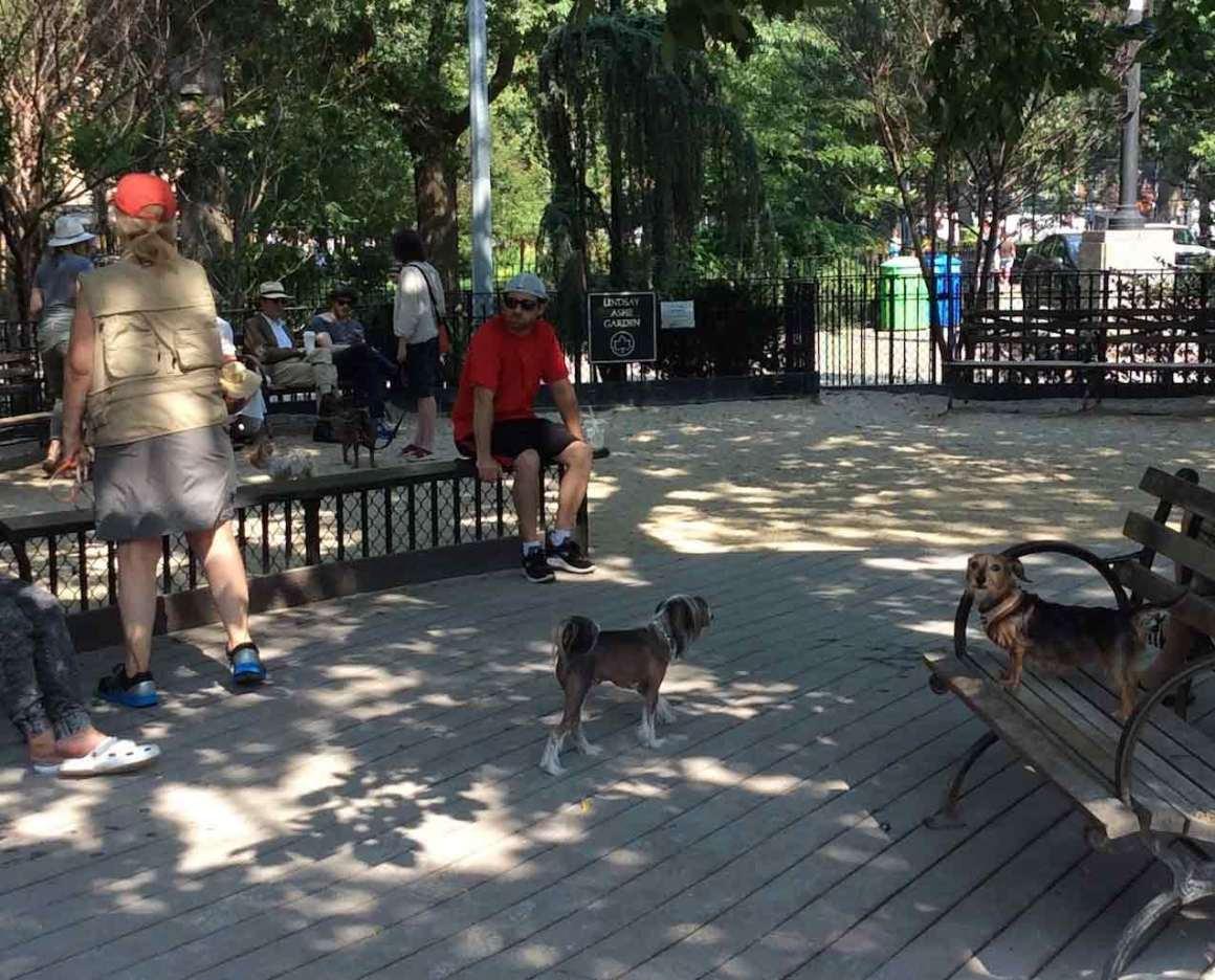 Tompkins Square Dog Run