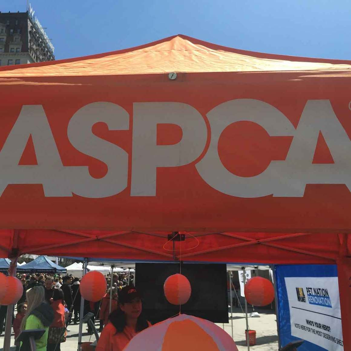 Adoptapalooza and the ASPCA's 150th Anniversary