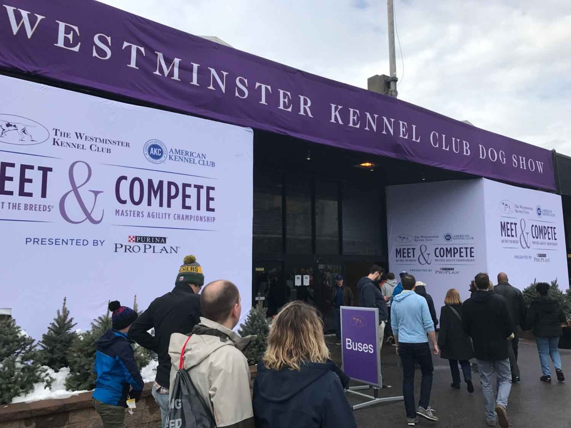 Westminster Meet and Compete