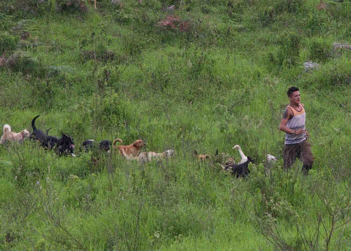 El Territorio de Zaguates (Photo: Rob Polishook)