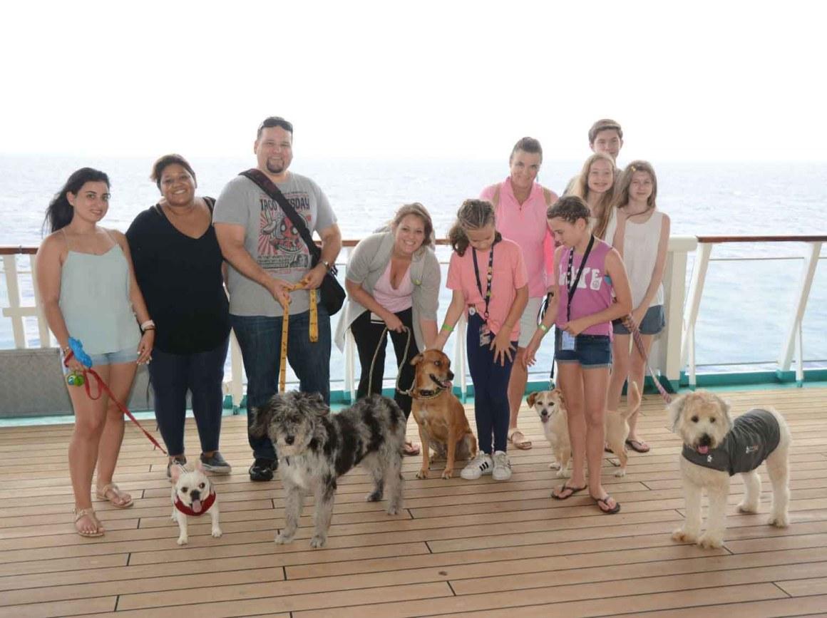 Dogs Ahoy! (Courtesy of Royal Caribbean International)