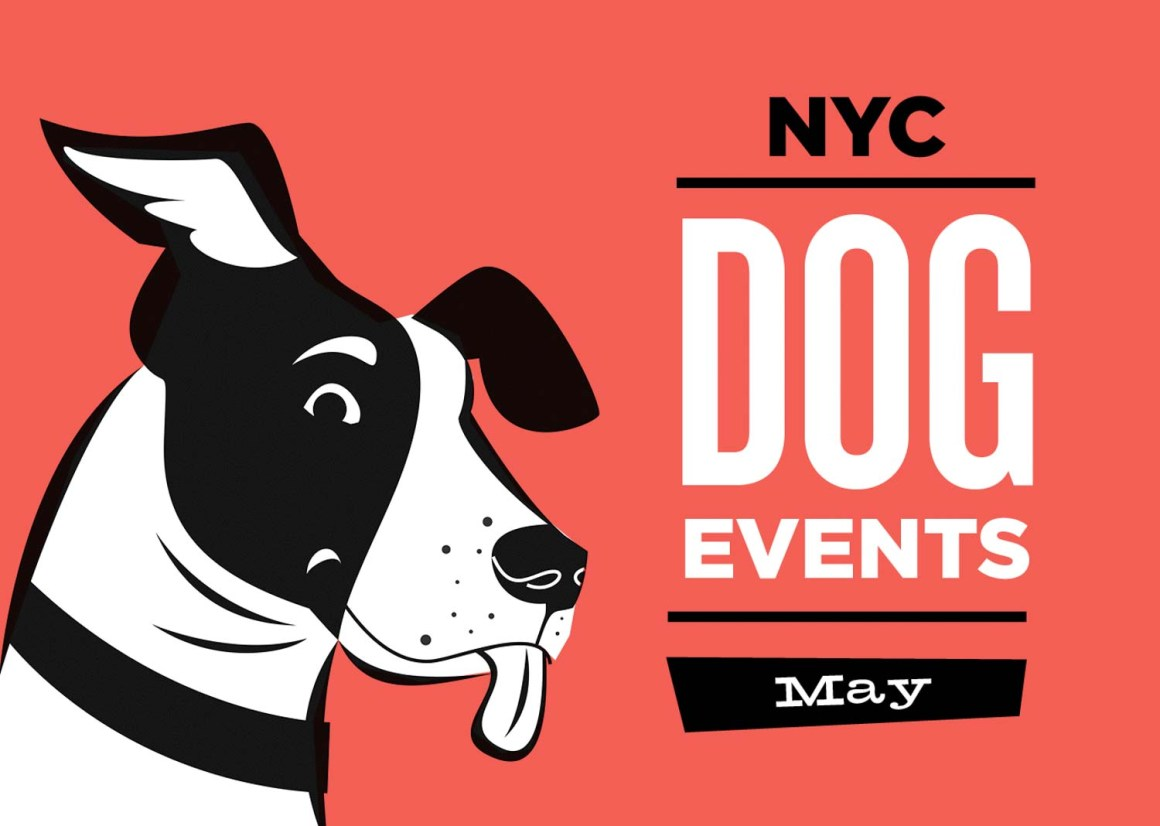 NYC Dog Events May