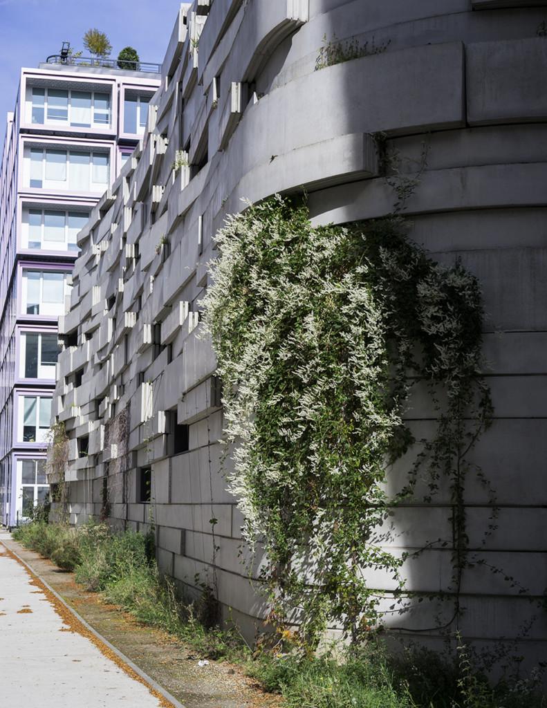 Groupe scolaire de la Biodiversité Boulogne Billancourt - Crédits photo Chartier Dalix
