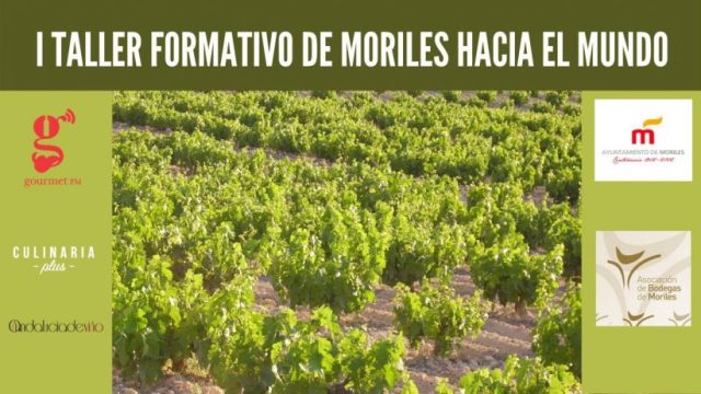 Taller Formativo Vinos de Moriles