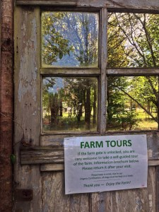 Farm tours are available.  While I was there a school was visiting.