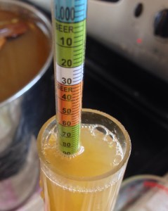 Next test your mixture for specific gravity. You want a reading between 1.080 and 1.095. If it's below 1.080 you will need to add sugar, if it's above 1.095 add water unless you want a very sweet and alcoholic wine.