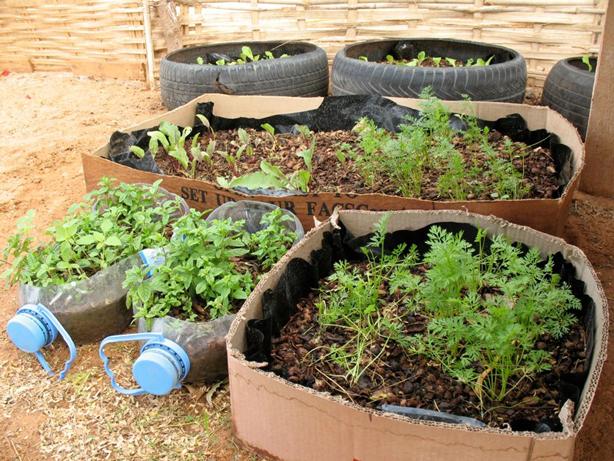 senegal_recycled_garbage_garden
