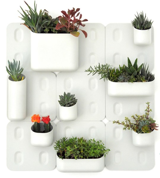 indoor vertical garden system Modular Vertical Garden Brings Green to Urban Walls