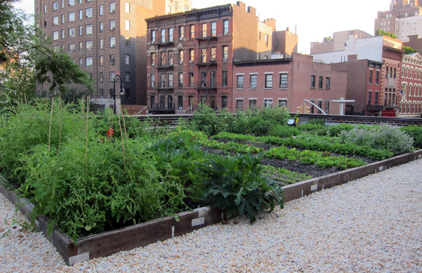 Nyc S Rosemary S Restaurant Serves Up Food From Its Rooftop Garden