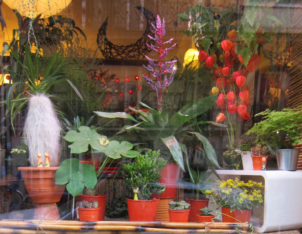 paris-neighborhood-florist
