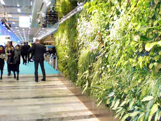 Greenworks-Green-wall-hales