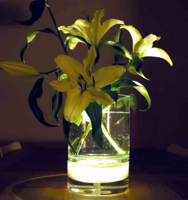 bloom-vase