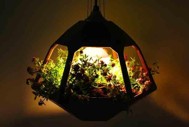 vicky-lamp-jdelao