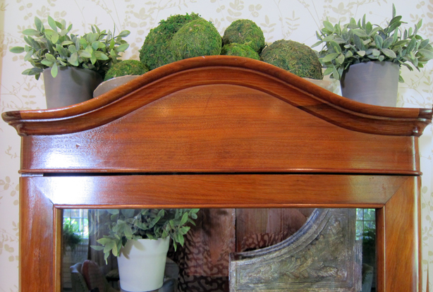ct-showhouse-armoir-plants