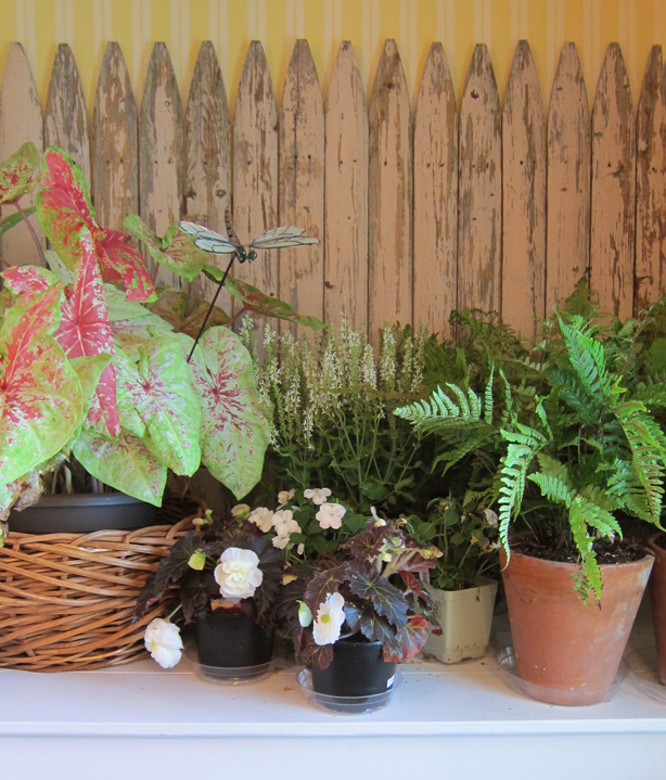 ct-showhouse-picket-fence-bathroom-plants