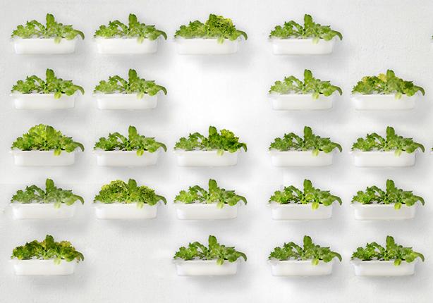 eliooo-hydroponic-wall-ikea